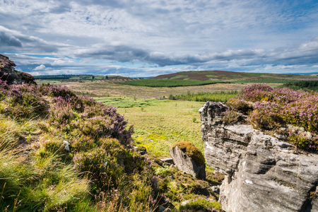 the crags: Heather covered Wanney Crags - Great Wanney Crag on the edge of Northumberland National Park is a remote escarpment popular with rock climbers Stock Photo