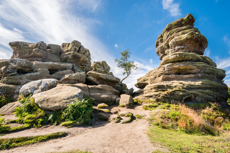 boulder rock: Weathered Brimham Rocks - Brimham Rocks on Brimham Moor in North Yorkshire are weathered sandstone, known as Millstone Grit,creating some dramatic shapes, many of which have been named