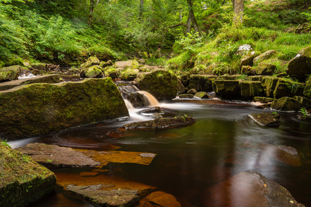 moors: West Beck at Mallyan Spout  Mallyan Spout waterfall at Goathland in the North York Moors National Park flows into West Beck which has created a deep gorge
