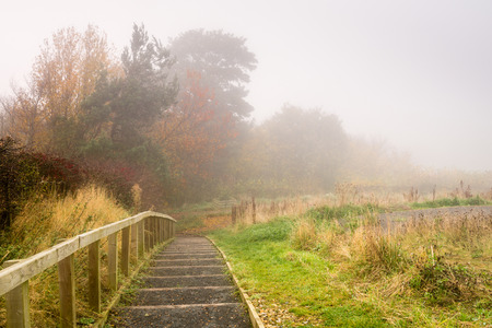 shrouds: Steps to Flodden Monument in Fog - Fog shrouds the orange leaves of Autumn next to the pathway to Flodden Monument Stock Photo