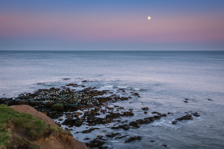 sharpness: Moon above the North Sea - The Moon rises off Sharpness Point, Tynemouth at dusk as the seagulls settle down