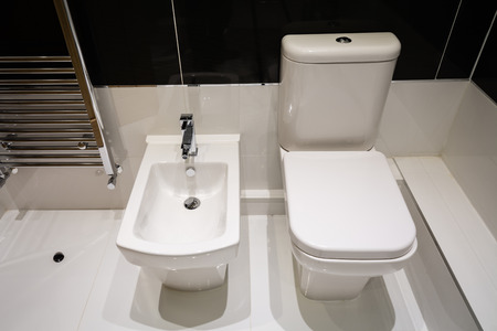 house ware: White Bidet and Toilet Coordinated in a modern bathroom