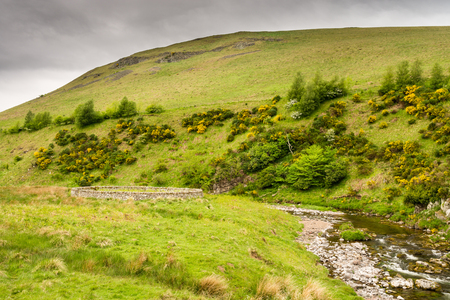 sheepfold: Sheepfold besides the River Coquet - The River Coquet winds its way through Upper Coquetdale Valley past many circular sheepfolds, protection in the harsh winters Stock Photo