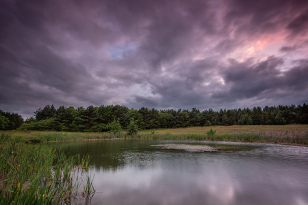 East Cramlington Local Nature Reserve at sunset, in Northumberland, which provides free and easy access to nature