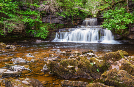 Cotter Force is a small waterfall on Cotterdale Beck, a minor tributary of the River Ure, near the mouth of Cotterdale, a side dale in Wensleydale, North Yorkshire