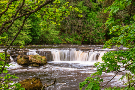 River Ure at Upper Aysgarth Falls, which consist of three main falls, lower, middle and upper falls. They are spread over a mile of the River Ure in Wensleydale Stock Photo