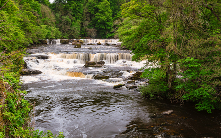 north cascade national park: Aysgarth Upper Falls, which consist of three main falls, lower, middle and upper falls. They are spread over a mile of the River Ure in Wensleydale Stock Photo