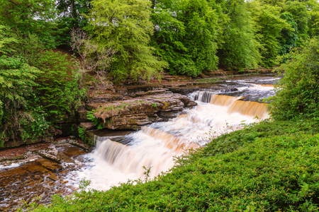 Aysgarth Lower Waterfall, which consist of three main falls, lower, middle and upper falls. They are spread over a mile of the River Ure in Wensleydale