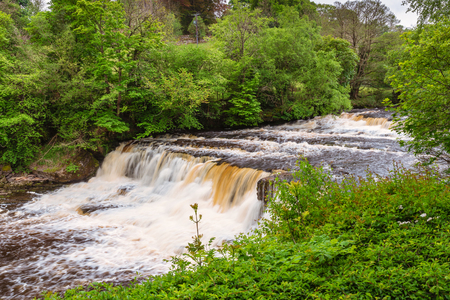 Aysgarth Middle Falls, which consist of three main falls, lower, middle and upper falls. They are spread over a mile of the River Ure in Wensleydale Stock Photo
