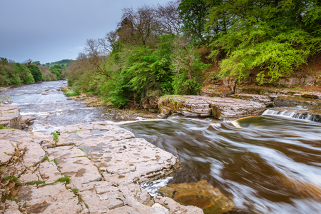 River Ure Flows over Aysgarth Lower Falls, which consist of three main falls, lower, middle and upper falls. They are spread over a mile of the River Ure in Wensleydale