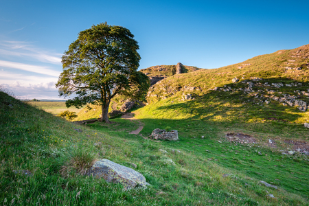 Sycamore Gap on Hadrian's Wall, which is a World Heritage Site in the beautiful Northumberland National Park. Popular with walkers along the Hadrian's Wall Path and Pennine Way