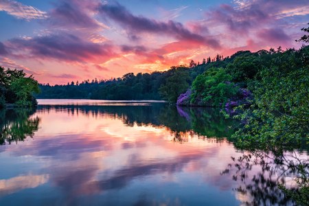 Bolam Lake Country Park in Twilight, located in the beautiful Northumberland countryside, it is surrounded by woodland seen here in early summer Stock Photo