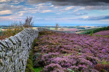 North East View from Ros Castle to the North Sea, also known as Ros Hill, due to an ancient prehistoric Hillfort on its summit, located near Chillingham in Northumberland and has great views all around it Zdjęcie Seryjne