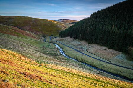 A young River Coquet meanders past Carshope Plantation, in the remote Upper Coquetdale Valley, located in the Cheviot Hills close to the Scottish Border in Northumberland National Park 写真素材