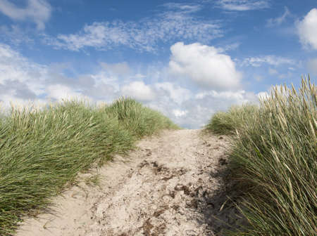 path through the dunes with marram grass under a blue sky with white clouds