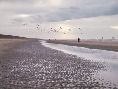 togther: view along a north sea beach on a winters day with stormy grey skies people and seagulls.