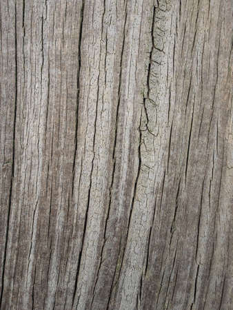 graying: detail of old cracked graying wood for background Stock Photo