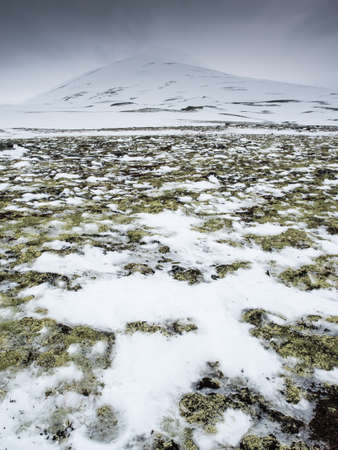 snow covered mountain top with reindeer moss and patches of thawing snow and ice in the foreground Stock Photo