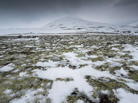 thawing: snow covered mountain top with reindeer moss and patches of thawing snow and ice in the foreground Stock Photo