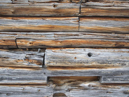 knotting: detail of cabin wall of weathered greyed logs for background Stock Photo