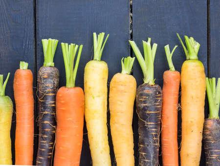an arangment of  freshly harvested heritage carrot varieties against a rustic dark grey wooden background