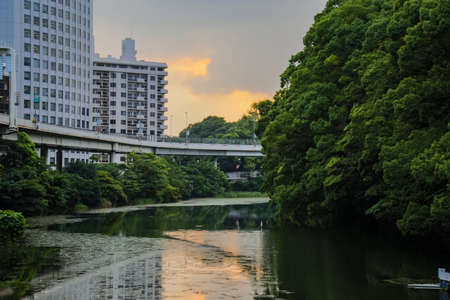A shot at sunset looking across a section of the old moat of the Imperial Palace.  This section of moat has a small boat rental dock and is near many of the Embassies in Tokyo.