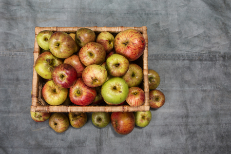 windfalls: A basket of apples Stock Photo