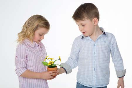 Généreuse enfant donne petite tournesol à son amie Banque d'images - 34736096