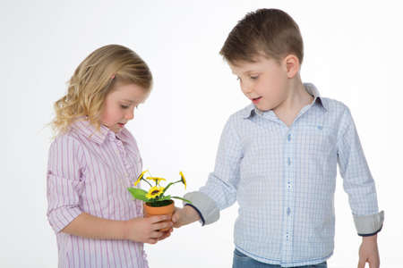 generous child gives small sunflower to his female friend