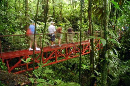 steamy: Costa Rica Rainforest Bridge