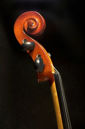 A side view of a violin head