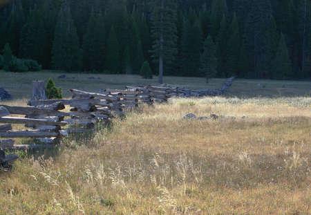 split rail zigzag fence in sunny field Stock Photo
