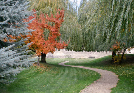 Manicured winding park trail