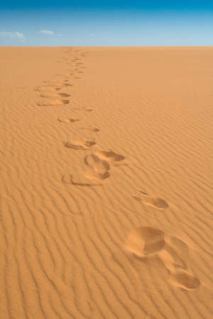 Footprints in coral pink sand dune stretching toward sky