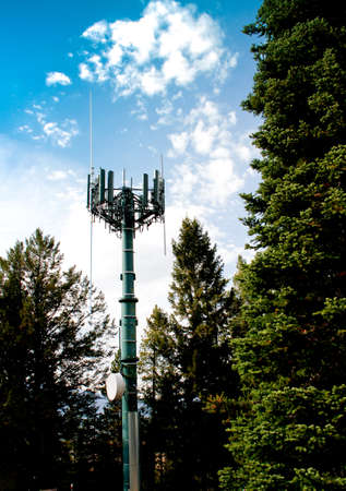 cell phone transmission tower against blue sky in dark green forest