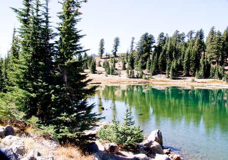 Grüne Kiefern, die auf sehr flachen blauen Bergsee reflektieren Standard-Bild - 33302824