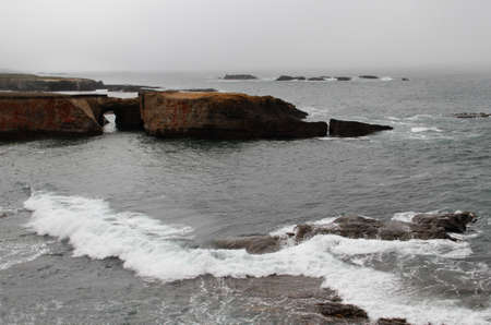 Waves on fog shrouded rocky calif coastline cliff