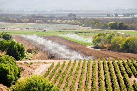 Sprinklers watering busy Calif farm with tree and vineyard