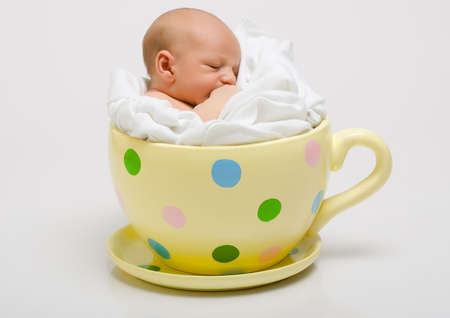 new born baby: New born in yellow spotted cup Stock Photo