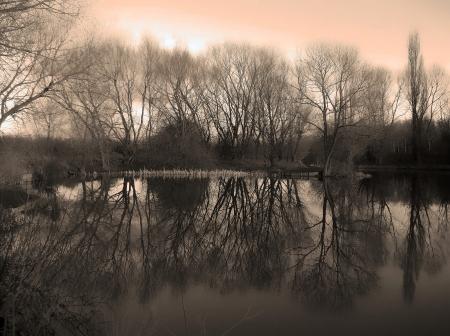 Winter at Anderton