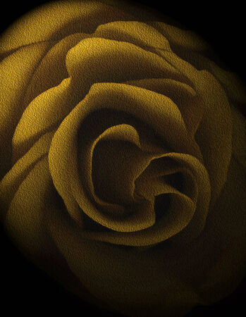 Yellow Textured Rose