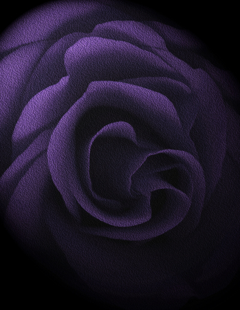 Textured Lilac Rose