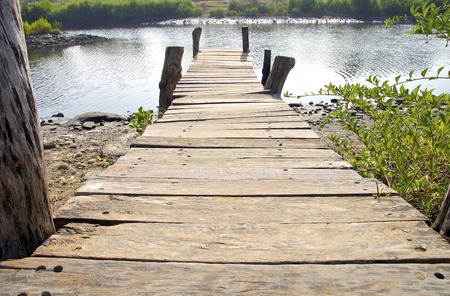 The wooden jetty into lake photo