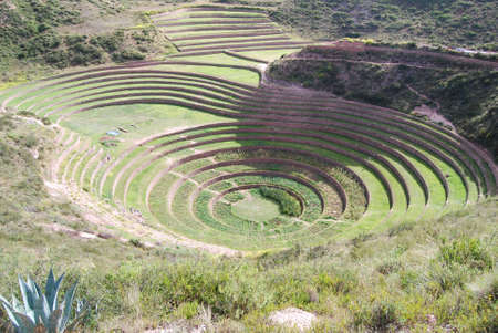 Cultivation terraces of Moray Peru photo