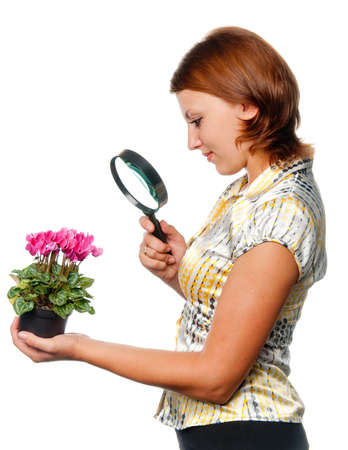Girl considers cyclamens through a magnifier Stock Photo - 7390159