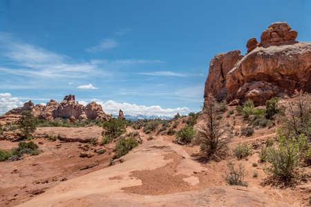Majestic Path View at Arches National Park