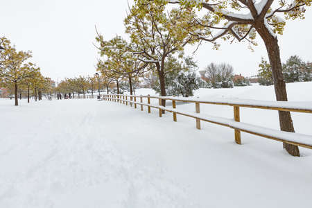 snow covered park in Guadalajara, spain after storm Filomena