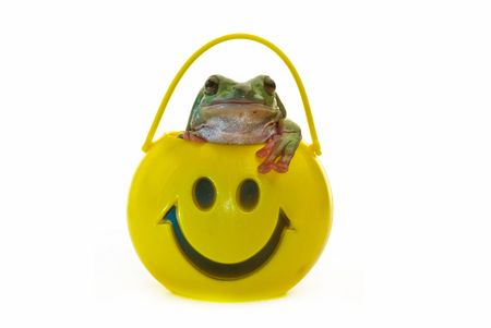 A green frog coming out of a yellow smiling head