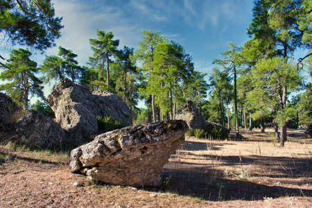 Idyllic rock in the natural setting of the Enchanted City in Cuenca, Spain Imagens