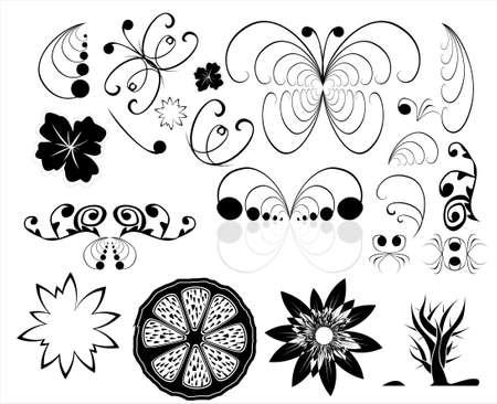 lemon tree: Floral and butterflies design elements     Illustration